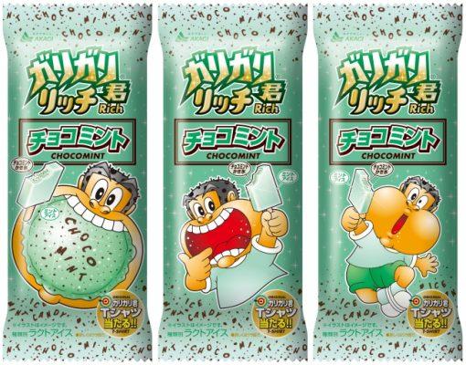 Akagi Dairy Industries Garigar-kun富含巧克力薄荷